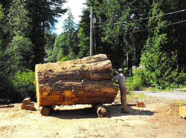 Raw Lumber