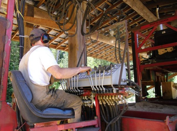 Sawmill In Action